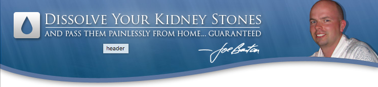 author of Kidney Stone Removal Report